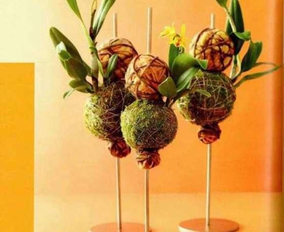 Rodzinny Galimatias: Wiosenne kokodemy